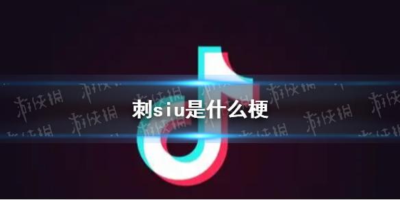 七鱼娱乐网1
