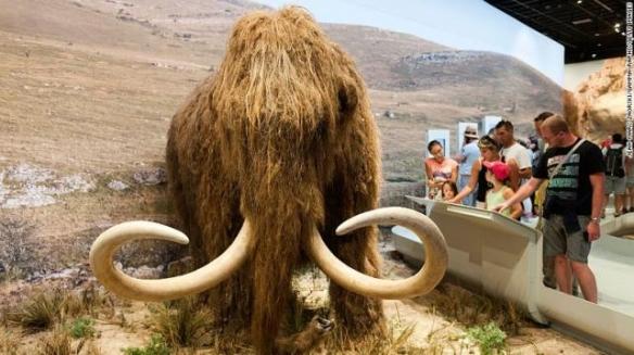 """科学家有望6年内""""创造""""猛犸象:获1500万美元投资!"""