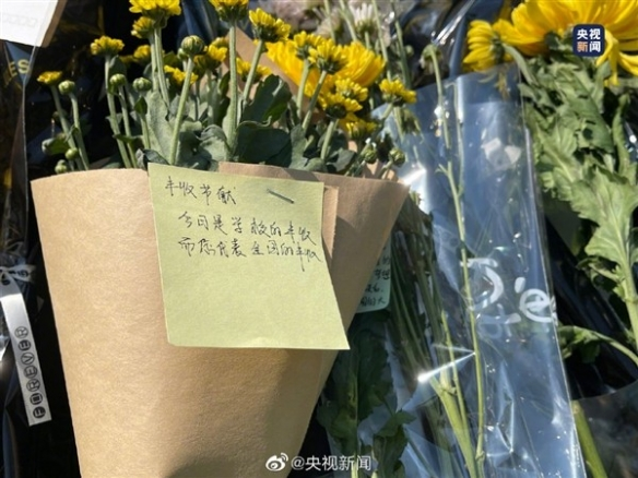 袁隆平雕像前满是鲜花上热搜!稻香满穗时来看您!