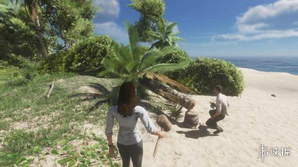 生存游戏《荒岛求生》最新更新推出!支持在线联机